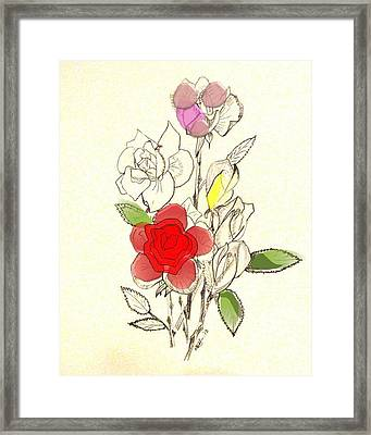 Rose Collections 2 Framed Print by Howard Elliott