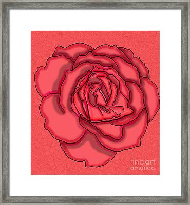 Rose Drawing Framed Print by Christine Perry