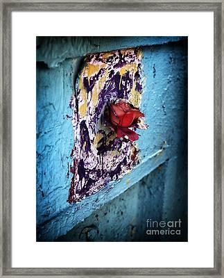 Rose For The Dead Framed Print by John Rizzuto