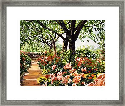 Rose Garden Impressions Framed Print by David Lloyd Glover