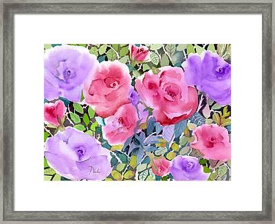 Rose Garden Framed Print by Neela Pushparaj