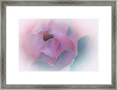 Rose Petal Pastel By Kaye Menner Framed Print by Kaye Menner