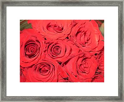 Rose Swirls Framed Print by Sonali Gangane