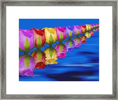 Roses Floating Framed Print by Tom Mc Nemar