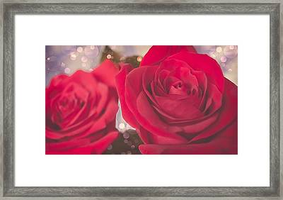 Roses For Me  Framed Print by Maibel  Ziello