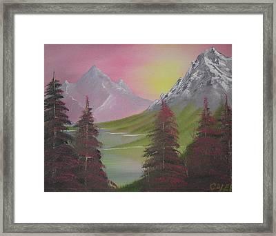Rosie Pine Framed Print by Caleb Mitchell