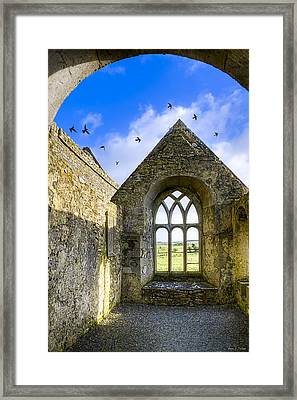 Ross Errilly Friary - Irish Monastic Ruins Framed Print by Mark E Tisdale