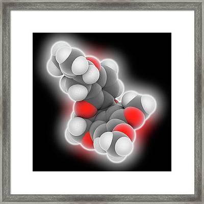 Rotenone Molecule Framed Print by Laguna Design