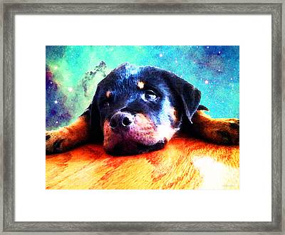 Rottie Puppy By Sharon Cummings Framed Print by Sharon Cummings