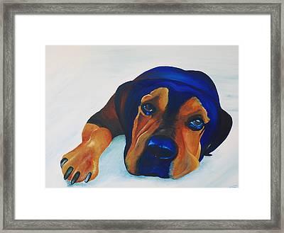 Rottweiler Framed Print by Catt Kyriacou