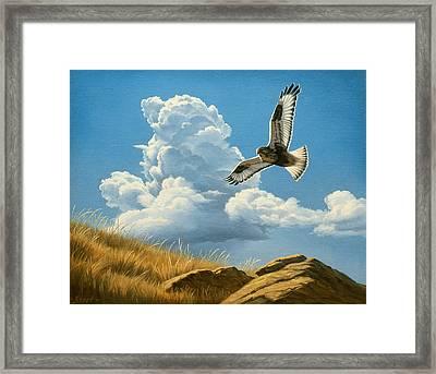 Rough-legged Hawk Framed Print by Paul Krapf