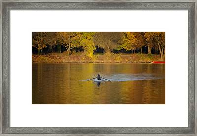 Rowing In The Golden Light Of Autumn Framed Print by Bill Cannon