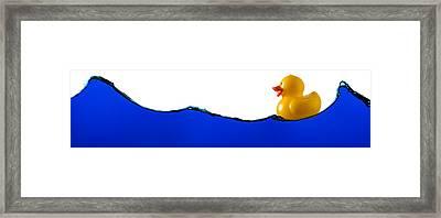Rubber Ducky Rides A Wave Framed Print by Steve Gadomski