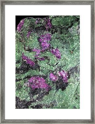 Ruby In Zoisite Framed Print by Dirk Wiersma