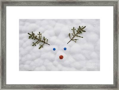 Rudolf Loves Ya Framed Print by Tim Gainey