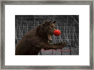 Rudolph Framed Print by Jean Noren