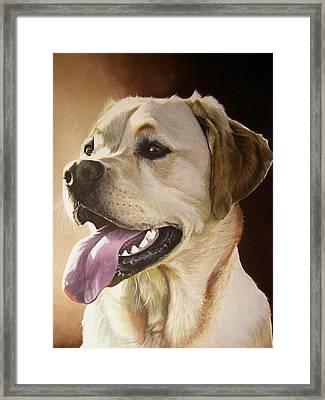 Rufus Framed Print by Julian Wheat