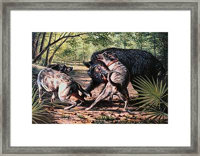 Rumble In The Palmetto Framed Print by Mike Roberts