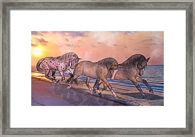 Running Free Framed Print by Betsy Knapp