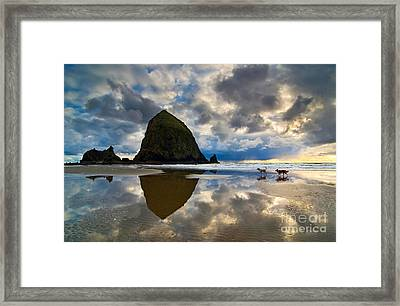 Running Free - Dogs Running In Beautiful Cannon Beach. Framed Print by Jamie Pham