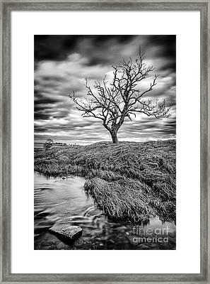 Running Through  Framed Print by John Farnan