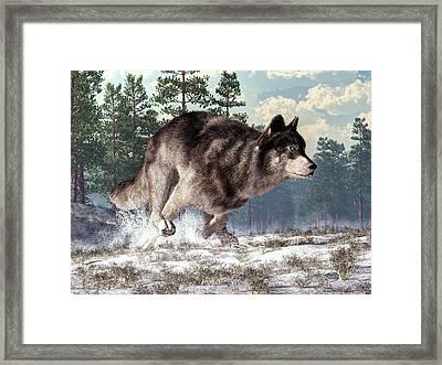 Running Wolf Framed Print by Daniel Eskridge