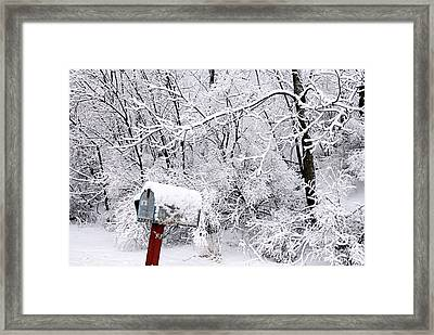 Rural Delivery Framed Print by Larry Ricker