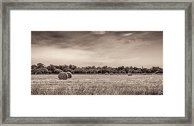 Rural Land Framed Print by Shari Mattox