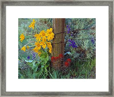 Rural Spring Framed Print by Leland D Howard