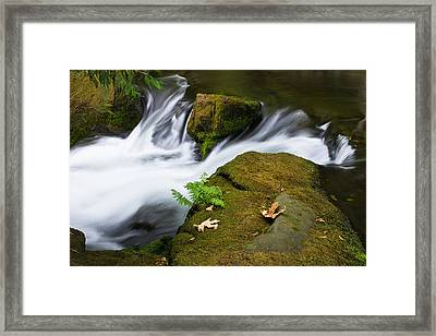 Rushing Water At Whatcom Falls Park Framed Print by Priya Ghose