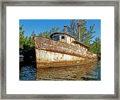 Rustic Framed Print by Carey Chen