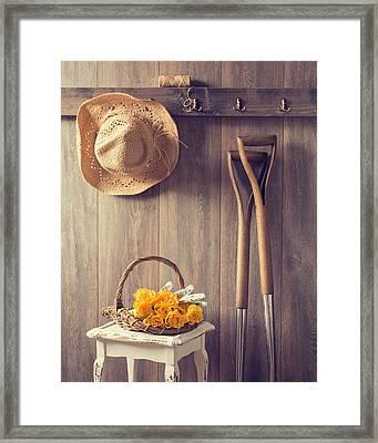 Rustic Shed Framed Print by Amanda Elwell