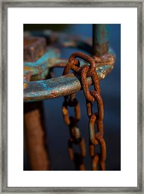 Rusty 2 Framed Print by Karol Livote