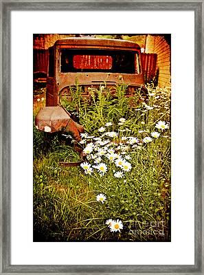 Rusty Gold Framed Print by Scott Pellegrin