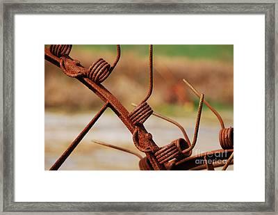 Rusty Tines Framed Print by Mary Carol Story