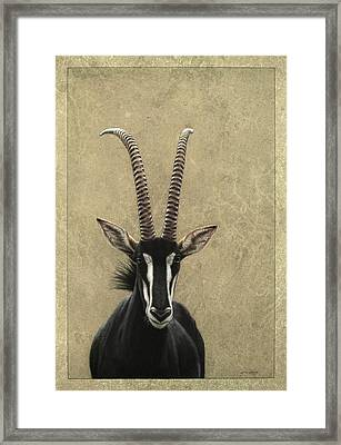 Sable Framed Print by James W Johnson