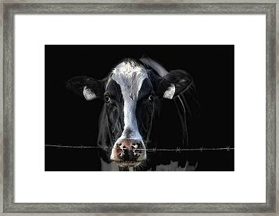 sad Lisa Framed Print by Joachim G Pinkawa