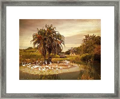 Safari Ride Framed Print by Lourry Legarde