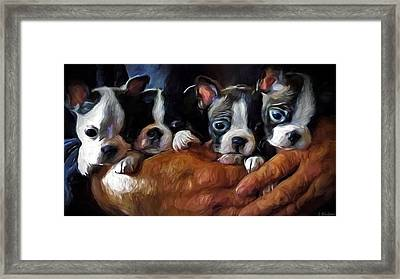 Safe In The Arms Of Love - Puppy Art Framed Print by Jordan Blackstone