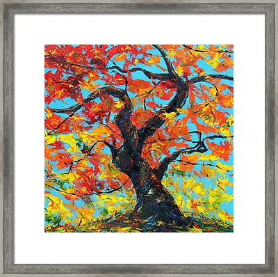 Safely Abiding Framed Print by Meaghan Troup