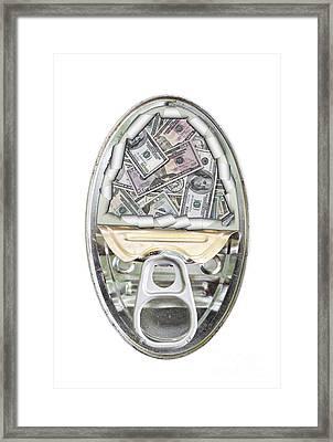 Safety Checkbook Money Framed Print by Michal Boubin