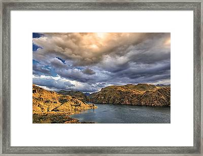 Saguaro Storms Framed Print by Anthony Citro
