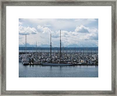 Sailboats In Seattle Framed Print by Steven Parker