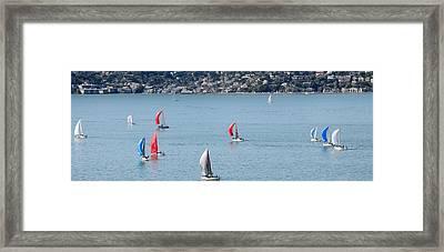 Sailboats On San Francisco Bay Framed Print by Panoramic Images