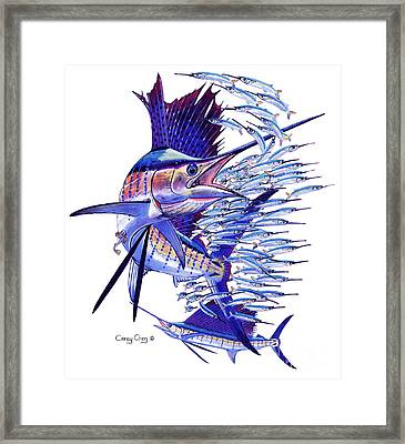 Sailfish Ballyhoo Framed Print by Carey Chen