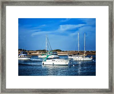 Sailing Framed Print by Camille Lopez