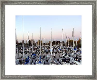Sailing Club Marina Framed Print by Dee  Savage