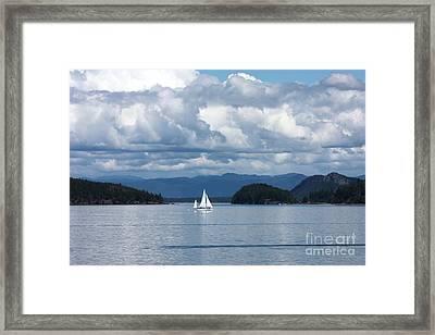 Sailing In The San Juans Framed Print by Carol Groenen