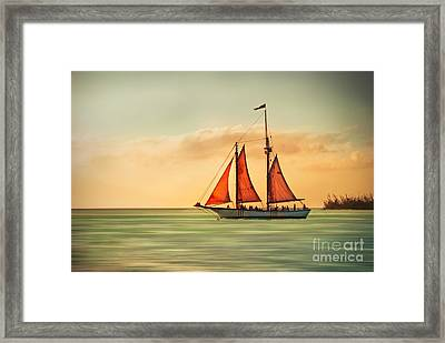 Sailing Into The Sun Framed Print by Hannes Cmarits