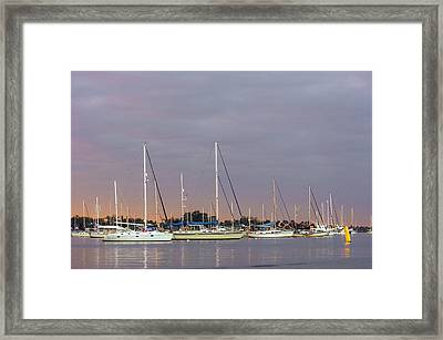 Saint Lucie River Framed Print by Patrick M Lynch